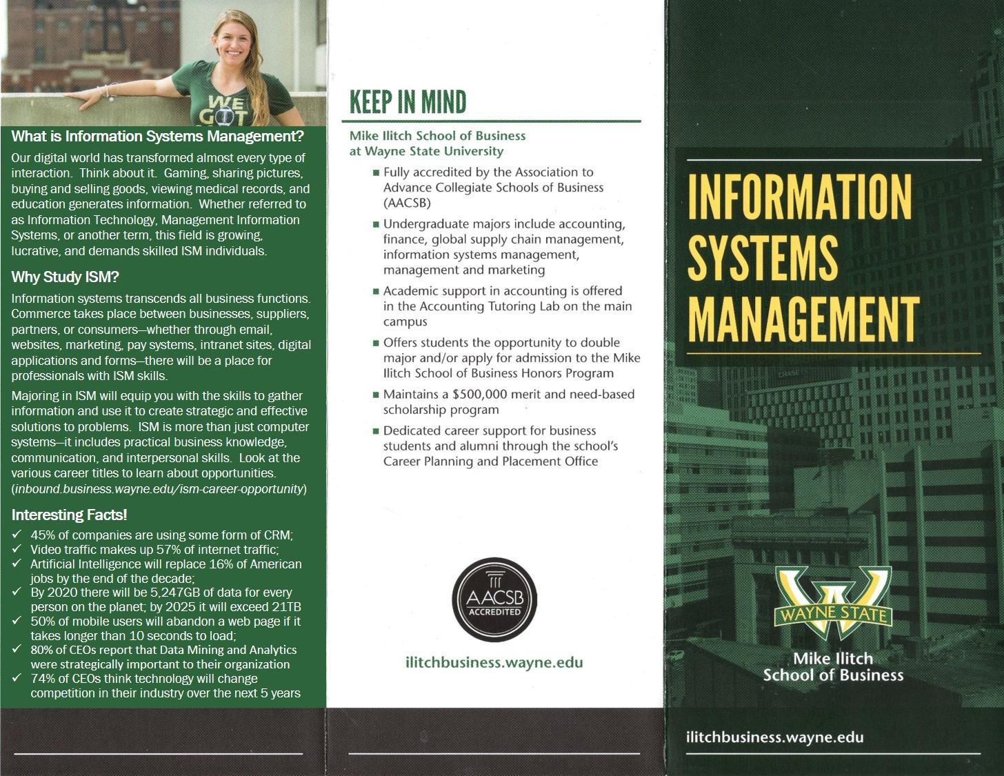 Front ISM Undergraduate Brochure V12
